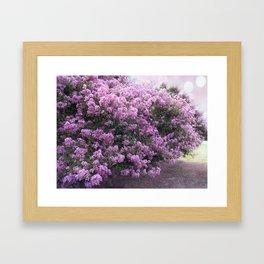 Purple Lavender Blossom Tree Framed Art Print