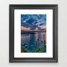 Aloe Sunrise Framed Art Print