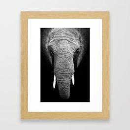 Black and white elephant Framed Art Print
