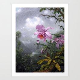 Martin Johnson Heade - Hummingbird Perched On An Orchid Plant - Humming Birds Art Print
