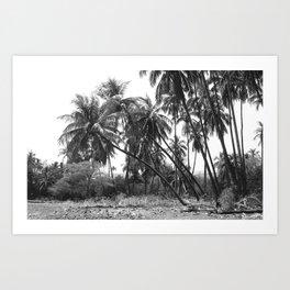 Palm Tree Noir #4 Art Print