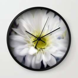Flower | Flowers | Daisy with Yellow Centre Wall Clock