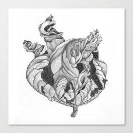 Dry Leaf Canvas Print