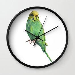 Budgie, parakeet, budgerigar,bird art, budgie painting Wall Clock