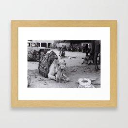 Leisure Framed Art Print