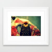 kirby Framed Art Prints featuring Kirby by Raspberry Diamonds Photography