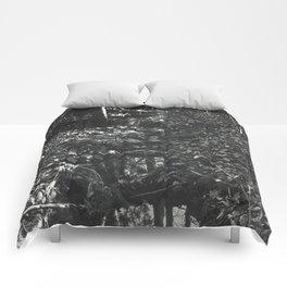 Small Creek Comforters