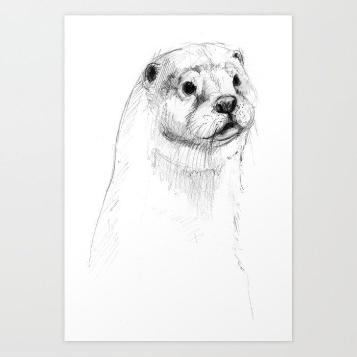 Eurasian otter drawing art print