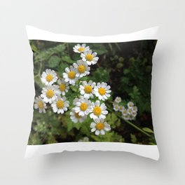 Nothing is Coming Up Daisies Throw Pillow