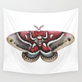 Moth - HYALOPHORA GLOVERI - Glover's silk moth | Painting | Watercolour | Insect Wall Tapestry