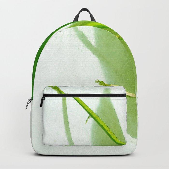 Kadydid Backpack