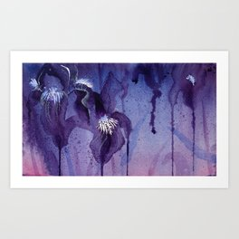 Iris, Blue and Purple Flowers Art Print