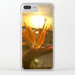 Sunset on Santa Monica beach Clear iPhone Case