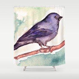 Pinzon azul Shower Curtain