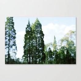 Tamworth  Canvas Print
