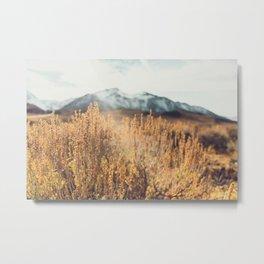 Eastern Sierras No 473 Metal Print