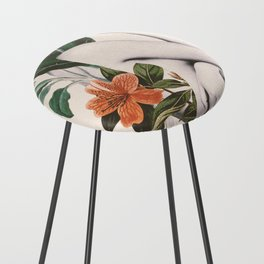 natural beauty-collage 2 Counter Stool