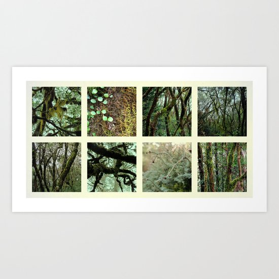 Alpine Rainforest Art Print