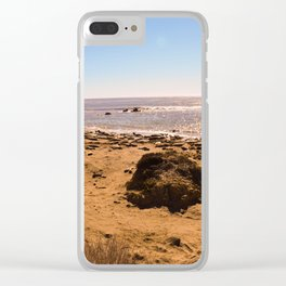Elephant Seals on the California Coast Clear iPhone Case