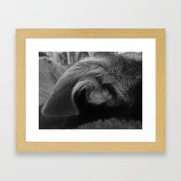 Ear of the Monster Framed Art Print