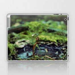 Resting in the Marsh Laptop & iPad Skin