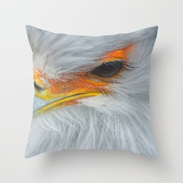 Feathers and eyelashes Throw Pillow