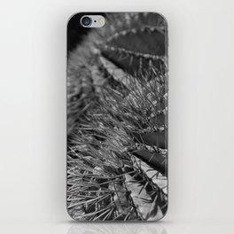 Catcus iPhone Skin