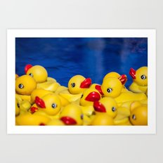 Duck Pile Art Print
