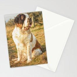 St Bernard dog in the sunset Stationery Cards