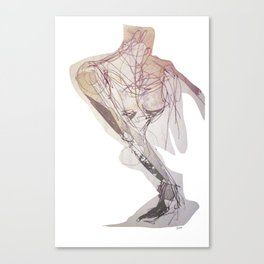 observant Canvas Print