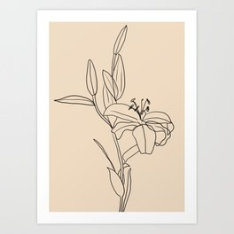 Lily Flower Line Drawing Art Print