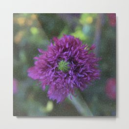 Blackcurrent Frilly Poppy Metal Print