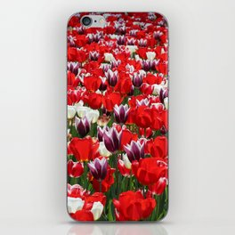 Tulip Sensation iPhone Skin