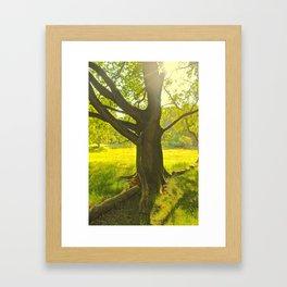 maxim Framed Art Print