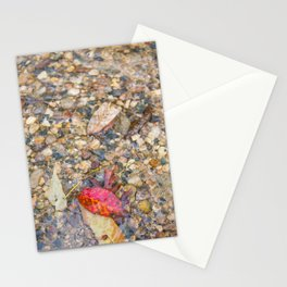 Red Leaf Stuck Among Watery Rocks Stationery Cards
