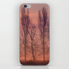 Beyond the Dawn iPhone & iPod Skin