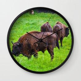 Herd of European bison Wall Clock