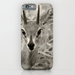Young Deer - Black & White iPhone Case