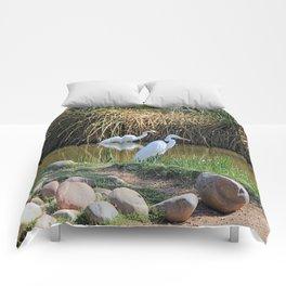 Snow Whites Comforters