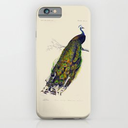 Vintage Peacock iPhone Case