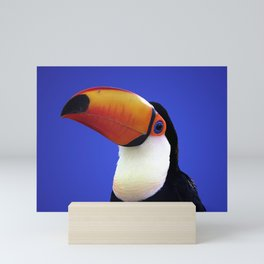 Toco Toucan Mini Art Print