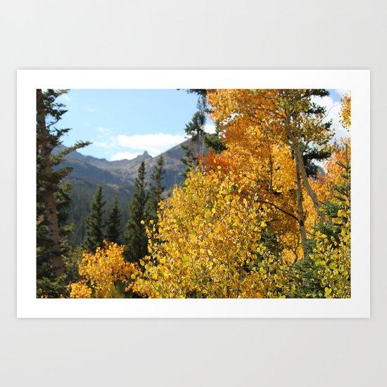 Autumn in the Rocky Mountains at Diamond Lake Trail, Eldora Colorado Art Print