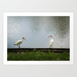 A Lakeside Chat Art Print