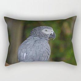 Herman Rectangular Pillow