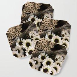 Gerbera Daisies Coaster