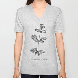 Cilantro Botanical Illustration Unisex V-Neck