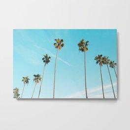 Tropical Miami Palm Trees Metal Print