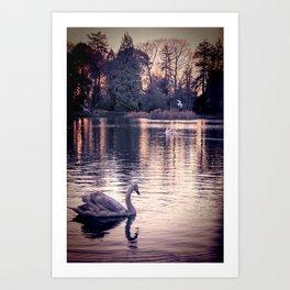 Swan Lake 2 Art Print