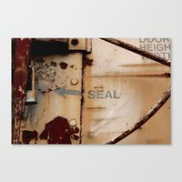 seal Canvas Prints featuring Seal by Shy Photog