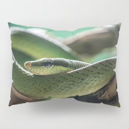 Green snake on the branch Pillow Sham